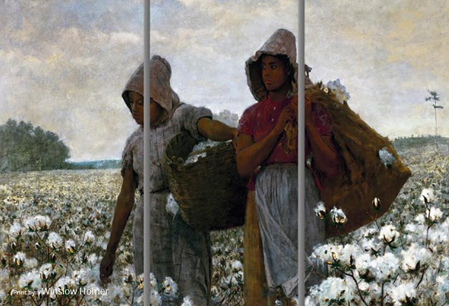 Two girls picking cotton